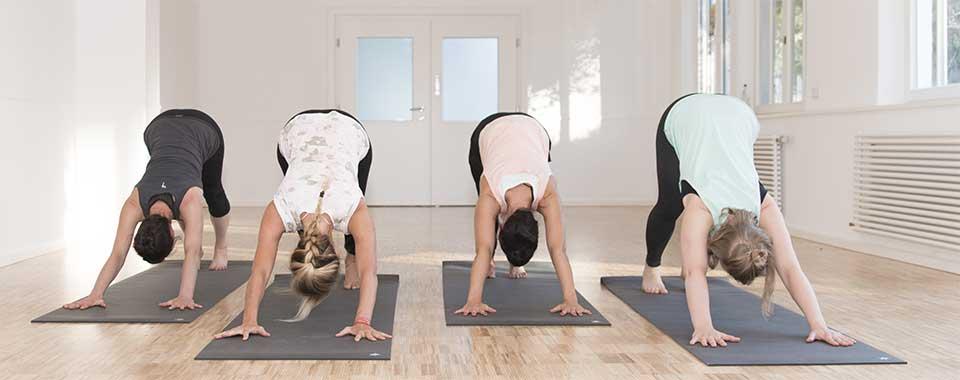 Auf diesem Bild sind Yoga Schüler im Herabschauenden Hund, einer Yoga Haltung (Asana).