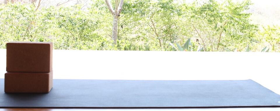 Über Yoga: Yoga Matte und zwei Korkblöcke