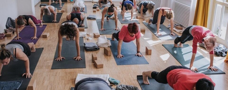 Auf diesem Foto sind viele Yoga Schüler in unserem Yoga Studio in Stuttgart West zu sehen.